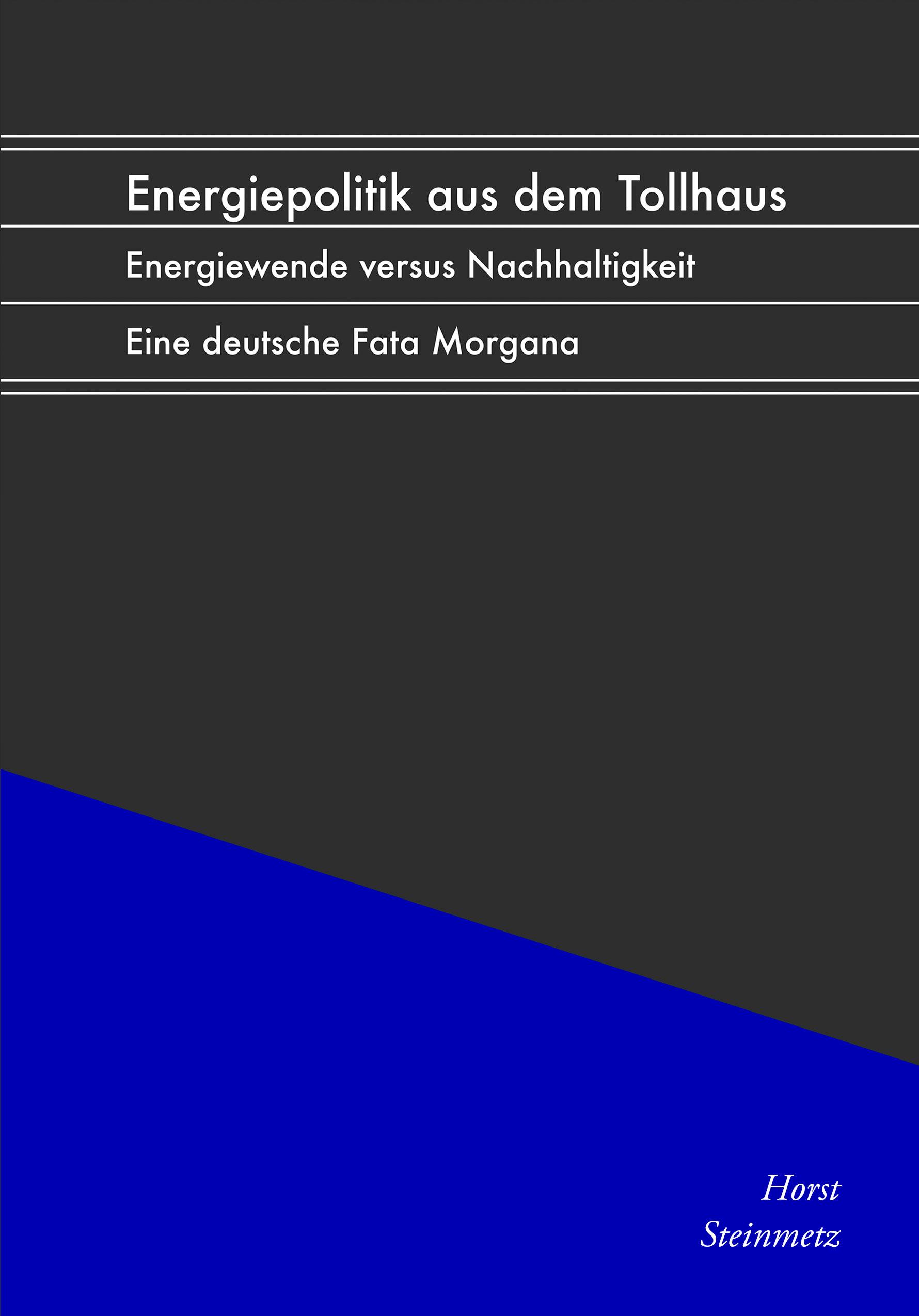 Horst Steinmetz.: Energiepolitik aus dem Tollhaus